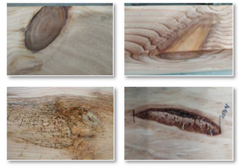 When we talk about wood we also talk about singularity. Knots, cracks, resin pockets, fibre deviation... all intrinsic characteristics of wood, and which make it a material with a high variability