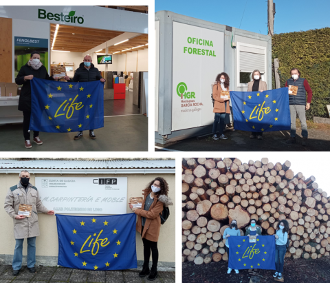 LIFE EcoTimberCell visits sawmills to disseminate the Structural Timber Sourcing and Characterisation Guide